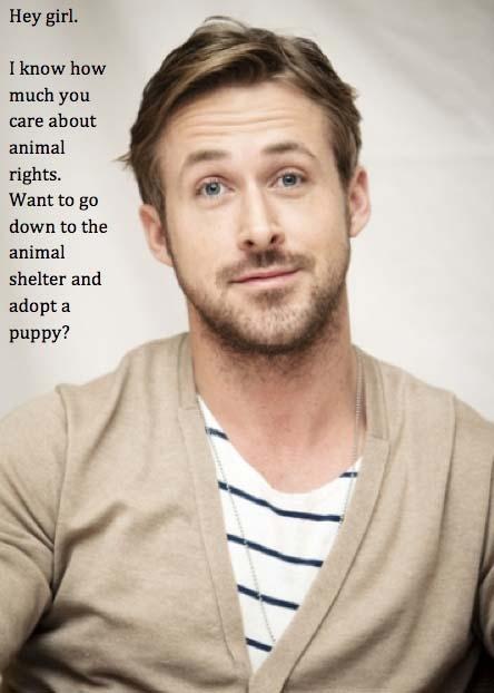 "Ryan Gosling Hey Girl Ryan Gosling ""Hey, G..."